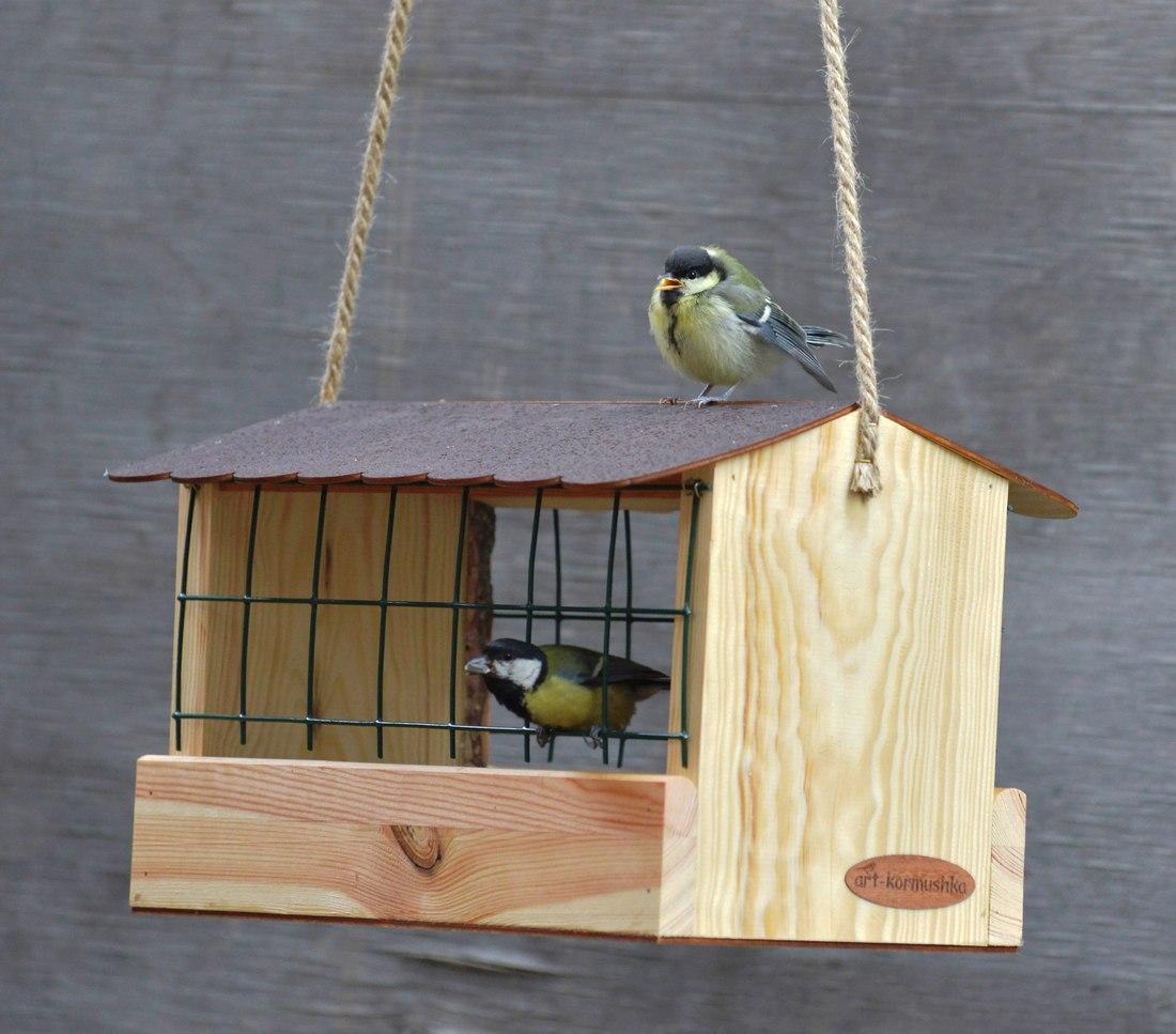 Удобные кормушки для птиц своими руками